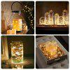 BRELONG 2m20LED Copper Wire String Lights for Christmas Indoor Decorations 8pcs - WARM WHITE