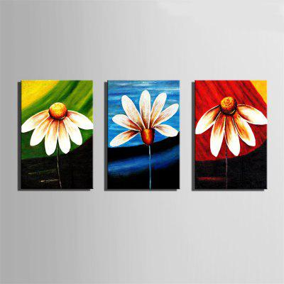 Special Design Frameless PaintingsThree Flower Print 3PCSPrints<br>Special Design Frameless PaintingsThree Flower Print 3PCS<br><br>Craft: Oil Painting<br>Form: Three Panels<br>Material: Canvas<br>Package Contents: 3 x Print<br>Package size (L x W x H): 26.00 x 37.00 x 5.00 cm / 10.24 x 14.57 x 1.97 inches<br>Package weight: 0.9000 kg<br>Painting: Without Inner Frame<br>Product size (L x W x H): 24.00 x 34.00 x 1.50 cm / 9.45 x 13.39 x 0.59 inches<br>Product weight: 0.8000 kg<br>Shape: Vertical Panoramic<br>Style: Vintage, Fashion, Active, Formal, Casual, Novelty<br>Subjects: Fashion<br>Suitable Space: Indoor,Outdoor,Cafes,Kids Room,Kids Room,Study Room / Office