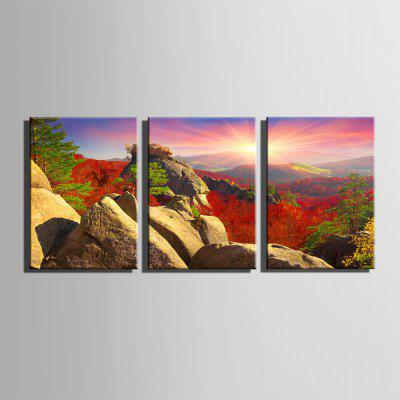 Special Design Frameless Paintings Hills Print 3PCSPrints<br>Special Design Frameless Paintings Hills Print 3PCS<br><br>Craft: Oil Painting<br>Form: Three Panels<br>Material: Canvas<br>Package Contents: 3 x Print<br>Package size (L x W x H): 26.00 x 37.00 x 5.00 cm / 10.24 x 14.57 x 1.97 inches<br>Package weight: 0.9000 kg<br>Painting: Without Inner Frame<br>Product size (L x W x H): 24.00 x 34.00 x 1.50 cm / 9.45 x 13.39 x 0.59 inches<br>Product weight: 0.8000 kg<br>Shape: Horizontal Panoramic<br>Style: Vintage, Fashion, Active, Formal, Casual, Novelty<br>Subjects: Fashion<br>Suitable Space: Indoor,Outdoor,Cafes,Kids Room,Kids Room,Study Room / Office