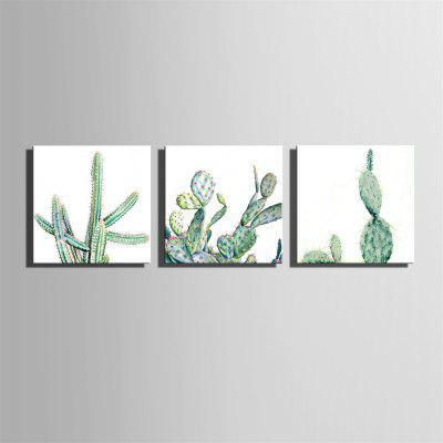 Special Design Frameless Paintings Cactus Print 3PCSPrints<br>Special Design Frameless Paintings Cactus Print 3PCS<br><br>Craft: Oil Painting<br>Form: Three Panels<br>Material: Canvas<br>Package Contents: 3 x Print<br>Package size (L x W x H): 62.00 x 63.00 x 5.00 cm / 24.41 x 24.8 x 1.97 inches<br>Package weight: 2.4500 kg<br>Painting: Without Inner Frame<br>Product size (L x W x H): 60.00 x 60.00 x 1.50 cm / 23.62 x 23.62 x 0.59 inches<br>Product weight: 2.3000 kg<br>Shape: Square<br>Style: Vintage, Fashion, Active, Formal, Casual, Novelty<br>Subjects: Fashion<br>Suitable Space: Indoor,Outdoor,Cafes,Kids Room,Kids Room,Study Room / Office
