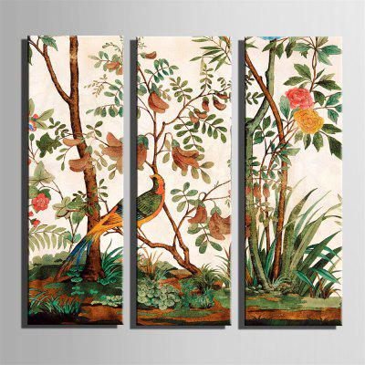 Special Design Frameless Paintings Cuckoo Print 3PCSPrints<br>Special Design Frameless Paintings Cuckoo Print 3PCS<br><br>Craft: Oil Painting<br>Form: Three Panels<br>Material: Canvas<br>Package Contents: 3 x Print<br>Package size (L x W x H): 26.00 x 73.00 x 5.00 cm / 10.24 x 28.74 x 1.97 inches<br>Package weight: 1.8000 kg<br>Painting: Without Inner Frame<br>Product size (L x W x H): 24.00 x 70.00 x 1.50 cm / 9.45 x 27.56 x 0.59 inches<br>Product weight: 1.7000 kg<br>Shape: Horizontal Panoramic<br>Style: Vintage, Fashion, Active, Formal, Casual, Novelty<br>Subjects: Fashion<br>Suitable Space: Indoor,Outdoor,Cafes,Kids Room,Kids Room,Study Room / Office