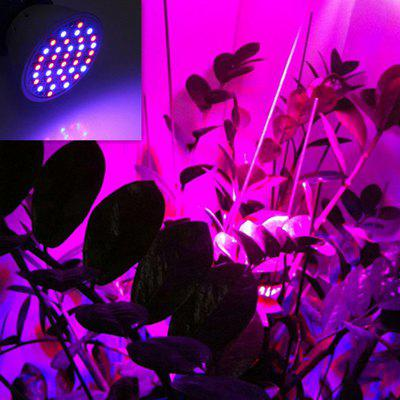 36 LED  Plant Grow LampGrow Lights<br>36 LED  Plant Grow Lamp<br><br>Body Material: Plastic<br>Is Dimmable: No<br>Light Source: LED Light<br>Package Contents: 1 x Plant Grow Light<br>Package Size(L x W x H): 5.20 x 5.20 x 6.50 cm / 2.05 x 2.05 x 2.56 inches<br>Package weight: 0.0270 kg<br>Product Size(L x W x H): 5.00 x 5.00 x 6.00 cm / 1.97 x 1.97 x 2.36 inches<br>Product weight: 0.0190 kg<br>Voltage: 85-265V