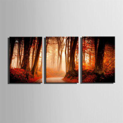 Special Design Frameless Paintings Jungle Path Print 3PCSPrints<br>Special Design Frameless Paintings Jungle Path Print 3PCS<br><br>Craft: Print<br>Form: Three Panels<br>Material: Canvas<br>Package Contents: 3 x Print<br>Package size (L x W x H): 62.00 x 43.00 x 5.00 cm / 24.41 x 16.93 x 1.97 inches<br>Package weight: 1.9000 kg<br>Painting: Without Inner Frame<br>Product size (L x W x H): 60.00 x 40.00 x 1.50 cm / 23.62 x 15.75 x 0.59 inches<br>Product weight: 1.8000 kg<br>Shape: Vertical<br>Style: Hipster, Vintage, Fashion, Active, Formal, Casual, Novelty<br>Subjects: Fashion<br>Suitable Space: Indoor,Outdoor,Cafes,Kids Room,Kids Room,Study Room / Office