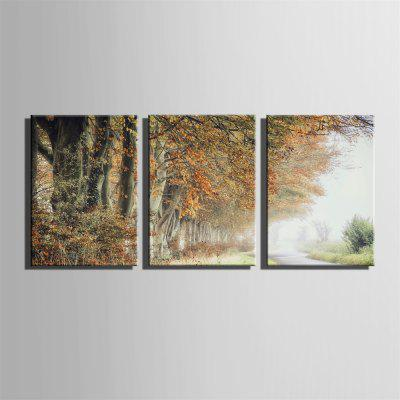 Special Design Frameless Paintings Early Autumn Print 3PCSPrints<br>Special Design Frameless Paintings Early Autumn Print 3PCS<br><br>Craft: Print<br>Form: Three Panels<br>Material: Canvas<br>Package Contents: 3 x Print<br>Package size (L x W x H): 62.00 x 43.00 x 5.00 cm / 24.41 x 16.93 x 1.97 inches<br>Package weight: 1.9000 kg<br>Painting: Without Inner Frame<br>Product size (L x W x H): 60.00 x 40.00 x 1.50 cm / 23.62 x 15.75 x 0.59 inches<br>Product weight: 1.8000 kg<br>Shape: Vertical<br>Style: Vintage, Fashion, Active, Formal, Casual, Novelty<br>Subjects: Fashion<br>Suitable Space: Indoor,Outdoor,Cafes,Kids Room,Kids Room,Study Room / Office