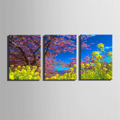Special Design Frameless Paintings Cole Flowers Print 3PCSPrints<br>Special Design Frameless Paintings Cole Flowers Print 3PCS<br><br>Craft: Print<br>Form: Three Panels<br>Material: Canvas<br>Package Contents: 3 x Print<br>Package size (L x W x H): 42.00 x 31.00 x 5.00 cm / 16.54 x 12.2 x 1.97 inches<br>Package weight: 1.1000 kg<br>Painting: Without Inner Frame<br>Product size (L x W x H): 40.00 x 28.00 x 1.50 cm / 15.75 x 11.02 x 0.59 inches<br>Product weight: 1.0000 kg<br>Shape: Vertical<br>Style: Vintage, Fashion, Active, Formal, Casual, Novelty<br>Subjects: Fashion<br>Suitable Space: Indoor,Outdoor,Cafes,Kids Room,Kids Room,Study Room / Office