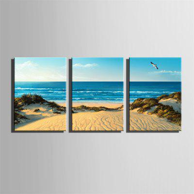 Special Design Frameless Paintings Sandy Beach Print 3PCSPrints<br>Special Design Frameless Paintings Sandy Beach Print 3PCS<br><br>Craft: Print<br>Form: Three Panels<br>Material: Canvas<br>Package Contents: 3 x Print<br>Package size (L x W x H): 62.00 x 43.00 x 5.00 cm / 24.41 x 16.93 x 1.97 inches<br>Package weight: 1.9000 kg<br>Painting: Without Inner Frame<br>Product size (L x W x H): 60.00 x 40.00 x 1.50 cm / 23.62 x 15.75 x 0.59 inches<br>Product weight: 1.8000 kg<br>Shape: Vertical<br>Style: Hipster, Fashion, Active, Casual, Novelty<br>Subjects: Fashion<br>Suitable Space: Indoor,Outdoor,Cafes,Kids Room,Kids Room,Study Room / Office