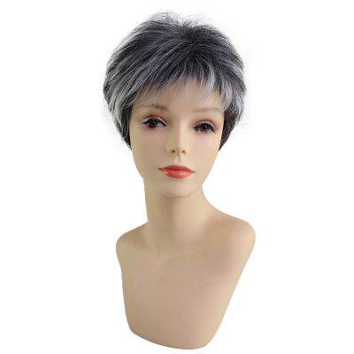 Short Beautiful Fashion Synthetic Wig Fit for Various Occasions