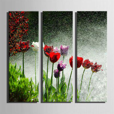Special Design Frameless Paintings Watering Print 3PCSPrints<br>Special Design Frameless Paintings Watering Print 3PCS<br><br>Craft: Print<br>Form: Three Panels<br>Material: Canvas<br>Package Contents: 3 x Print<br>Package size (L x W x H): 42.00 x 31.00 x 5.00 cm / 16.54 x 12.2 x 1.97 inches<br>Package weight: 1.1000 kg<br>Painting: Without Inner Frame<br>Product size (L x W x H): 40.00 x 28.00 x 1.50 cm / 15.75 x 11.02 x 0.59 inches<br>Product weight: 1.0000 kg<br>Shape: Vertical<br>Style: Fashion, Hipster, Active, Casual<br>Subjects: Fashion<br>Suitable Space: Indoor,Outdoor,Cafes,Kids Room,Kids Room,Study Room / Office
