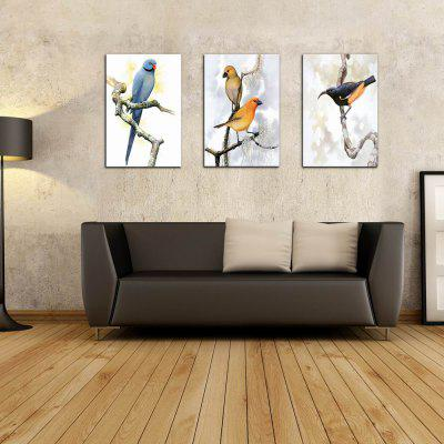 W213 Birds Frameless Art Wall Canvas Prints for Home Decorations 3 PCS