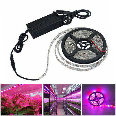 LED Grow Lights Growing LED light Strip 5050 IP65 Plant Growth Light for Greenhouse Hydroponic plant 5m/lot AC100-240V 2pcs 600w 800w 1000w double chips led grow light full spectrum lamp for indoor plants and flower led aquarium led grow box tent