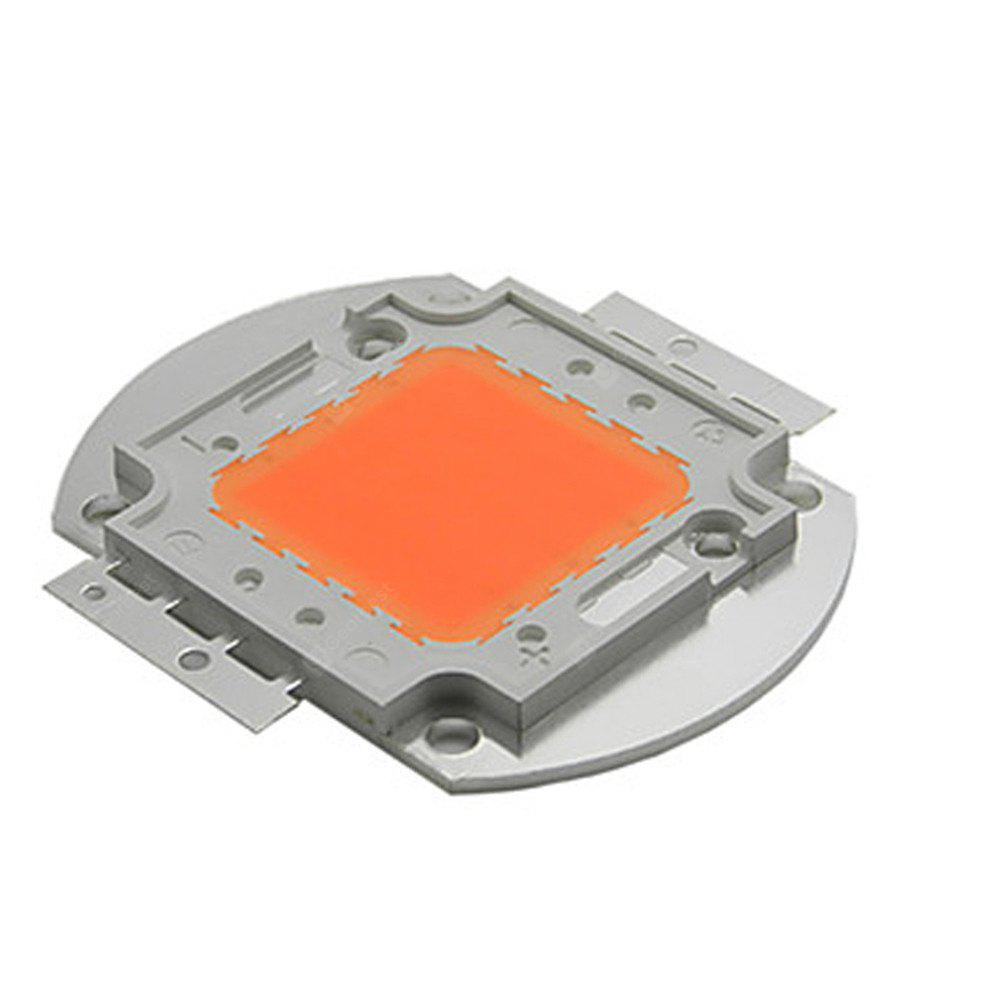 YWXLight 100W High Power LED Chips Pflanze wachsende Licht Lampe AC 30 - 34V