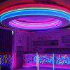 YWXLight 5M LED Strip Flexível Neon Lights Waterproof LED Light Lamp AC 220 - 240V - ROXA