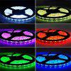 SUPli LED Strip Waterproof Set 5050 20M 4 x 5M 240W With 2.4G Touch Screen RF Remote Controller 12V 20A Power Adapter Kit - RGB COLOR