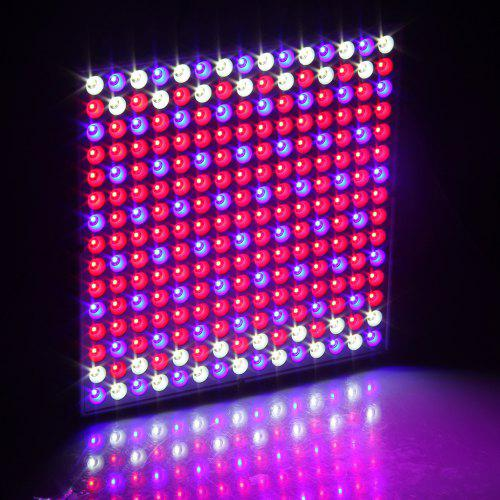 Gearbest Excelvan 14W 225 SMD LED Hydroponic Plant Grow Light & Lighting Panel, Full Spectrum for Plant Flower Vegetable Greenhouse Garden, Red&Blue&White Indoor Plant Grow Light + Hanging Kit,US. ( II Generat - WHITE EU