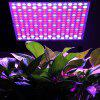 Excelvan 14W 225 SMD LED Hydroponic Plant Grow Light & Lighting Panel, Full Spectrum for Plant Flower Vegetable Greenhouse Garden, Red&Blue&White Indoor Plant Grow Light + Hanging Kit,US. ( II Generat - WHITE