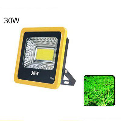 30w Cob Led Garden Light Search Lamp Outdoor Tree Projector lamp Colorful Waterproof Flood