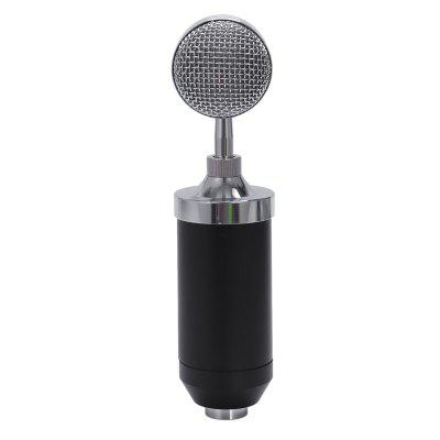 BM 8000 Condenser Microphone Professional Wired Studio Mic BM8000 With Shock Mount Kit