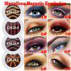 DNM Wonderful Magnetic Eye Shadow Flash Metallic Eyeshadow Powder Color Box Eye Cosmetics