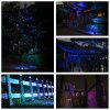 Lampwin Christmas Outdoor RGB Dynamic Firefly Projector Spotlight and Starry Lawn Light