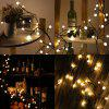 Lampwin Waterproof Rattan Globe String Lights Safe 24V 2.5m 72 Leds 8 Modes Memory Function Lights