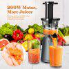 Mliter 200W Masticating Juicer Low Speed Cold Press Juicer with Cleaning Brush and Two Containers