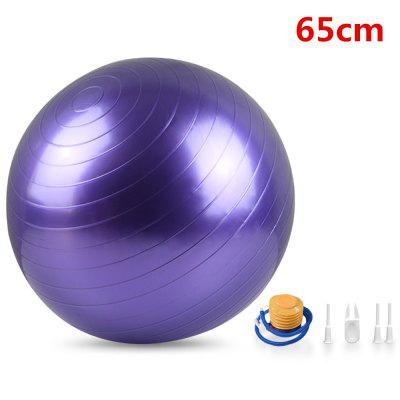 Exercise Physical Training Aid Yoga Ball Sport Fitness