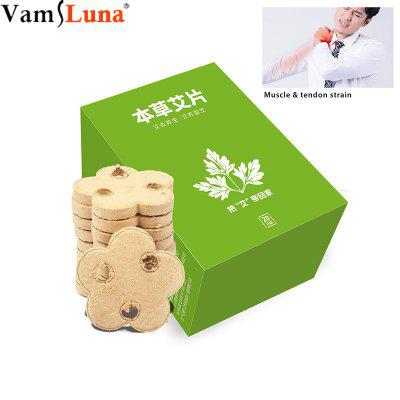 Five year wild moxa 20 PCS Suitable for Moxibustion Equipment Massage With Relieves illnesses