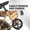 ENGWE Folding Electric Bike with 48V 8AH Removable Lithium-Ion Battery and 6 Speed Gear