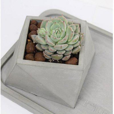 Succulent plant Concrete Flower Pot Mold Many Low-cost Promotion Cement Gypsum of Silicone Mold