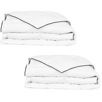 Winter Down Duvet 2 pcs Multiple Size
