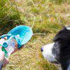 Pet Dogs Accompany Drinking Cups Outdoor Supplies Water Dispenser Portable Kettle Leaf Bottle - BLUE