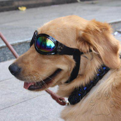 Pet Glasses Dog Protective Big Sunglasses