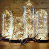 LED Copper Wire String Lamp Christmas Mini Lanterns Heart Decoration - WARM WHITE 2 METERS 20 LIGHTS 5TH BATTERY BOX