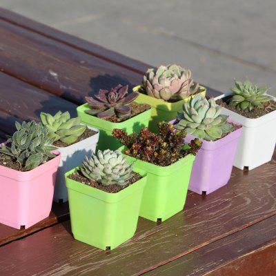 Colorful Plastic Square Pot Thick Succulent Planting Pot Greenhouse Special Small Square Bowl Nursery Pot