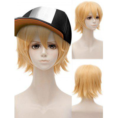 Short Side Bang Straight Anime Auto World King Cosplay Synthetic Wig