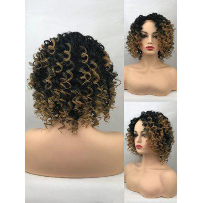 Short Side Bang Colormix Curly Lace Front Synthetic Wig