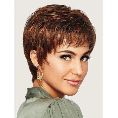 Short Neat Bang Colormix Straight Synthetic Wig