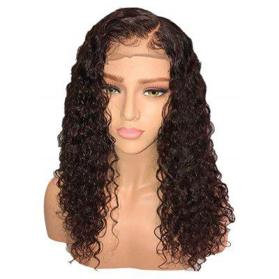 Side Parting Long Curly Synthetic Lace Front Wig