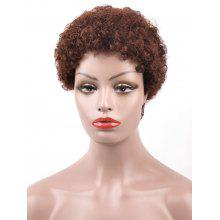 Real Human Hair Short Afro Curly Pixie Wig