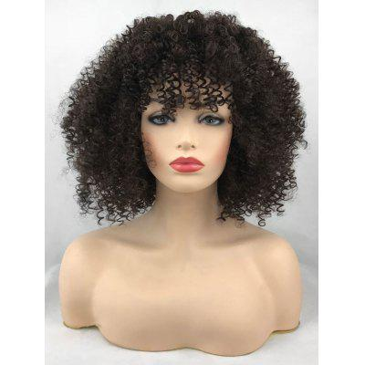 Short See-through Bang Afro Curly Synthetic Wig