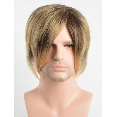 Short Capless Side Bang Layer Straight Synthetic Wig
