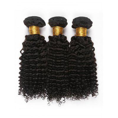 3Pcs Jerry Curly Human Hair Peruvian Virgin Hair Weaves