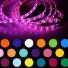 USB SMD5050 RGB Light Strip with Controller - WHITE