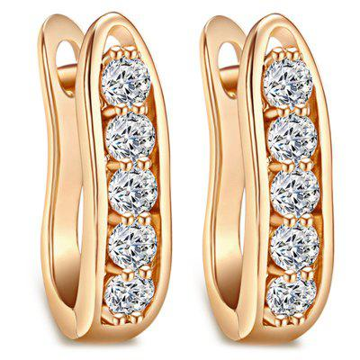 Fine Zircon Earrings ER0572