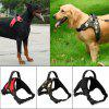 Dog Soft Adjustable Harness Vest Dog Chest Strap Walk Out Hand Strap Vest Dog Collar for Large Medium Small Dogs-Red - RED