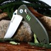 Ganzo G7501 - GR Folding Knife - ARMY GREEN