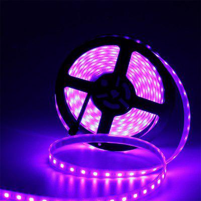 YWXLight 5M 5050SMD Fully Submersible LED Flexible Strip Light RGB Color Dc 12V
