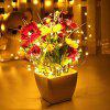 5M 50 LEDS Silver Wire String Lights - COLORFUL