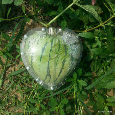 Heart-shaped Fruit Growth Forming Mold
