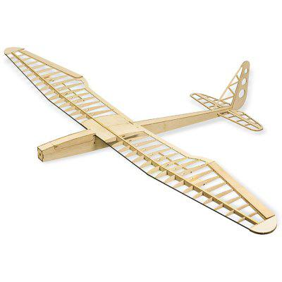 Dancing Wings Hobby Sunbird New Edition Fly Wing RC Aircraft